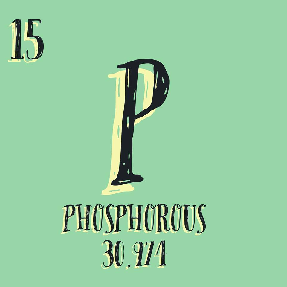 Is the Phosphorus in Your Diet Hurting Your Health?